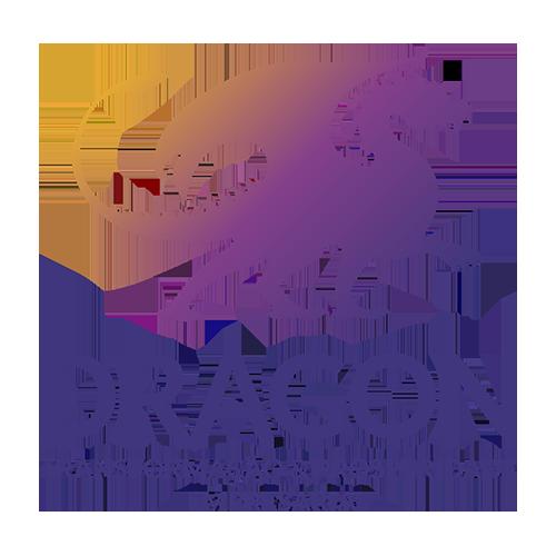 Dragon Transformacao Prosperidade